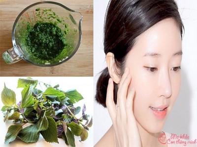 Những tác dụng bất ngờ của lá tía tô đối với da mặt