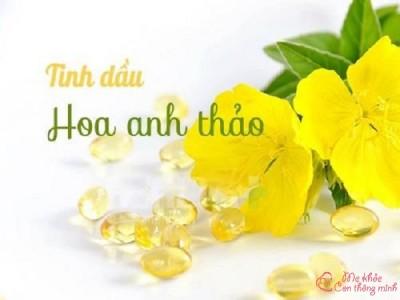 10 tác dụng thần kỳ của tinh dầu hoa anh thảo, ai cũng phải biết