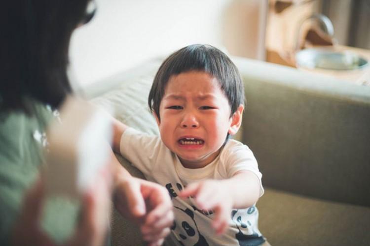 Cách đối phó với khủng hoảng tuổi lên 2 mà nhiều bố mẹ chưa biết?