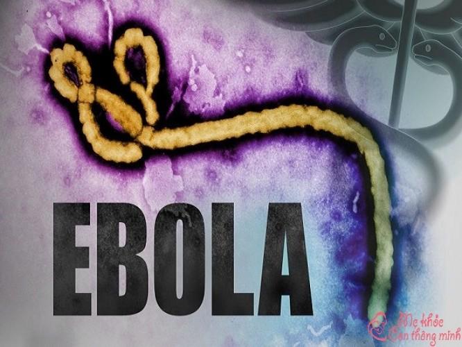 Ebola là gì? Các dấu hiệu nhận biết bệnh virus Ebola