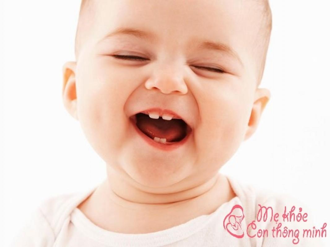 Mẹ Đã Biết Gì Về Thứ Tự Mọc Răng Của Trẻ Sơ Sinh Chưa?