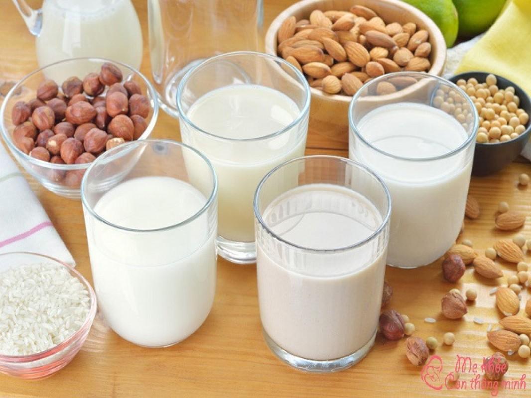 5 Công Thức Nấu Sữa Hạt Bằng Máy Giúp Con Lên Cân Đều Đều