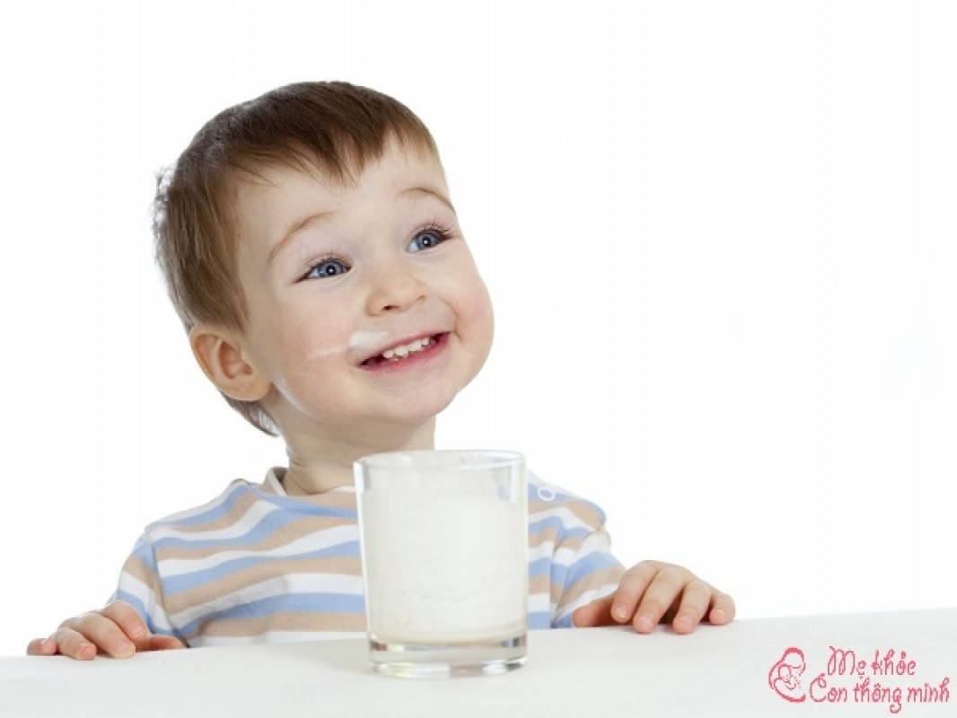 Top 5 Loại Sữa Tăng Cân Cho Bé 1 Tuổi Giúp Bé Lên Cân Như Diều Gặp Gió