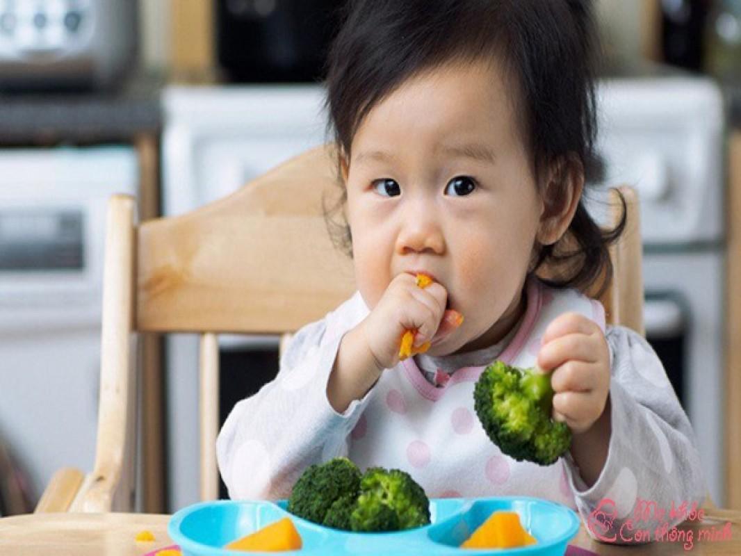 Ăn Dặm Kiểu BLW Là Gì? Lợi Ích Của Phương Pháp Ăn Dặm BLW