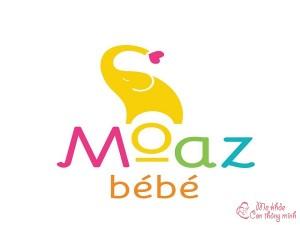Moaz Bebe